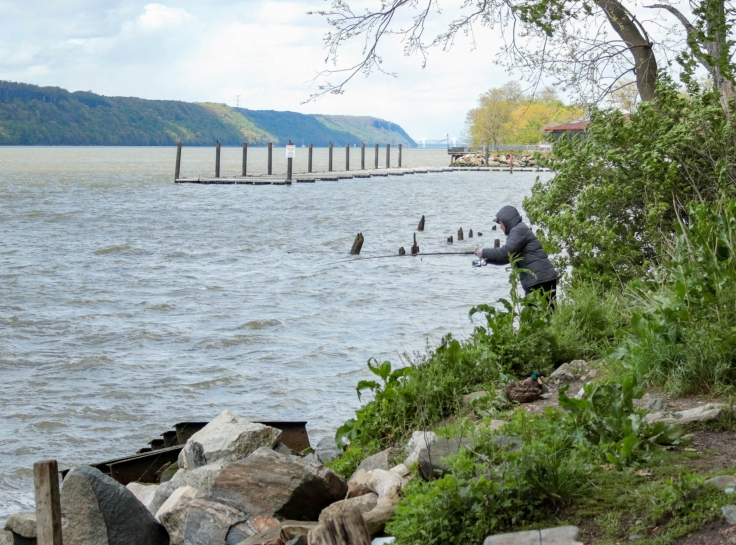 Fishing on the Hudson River, May 2020