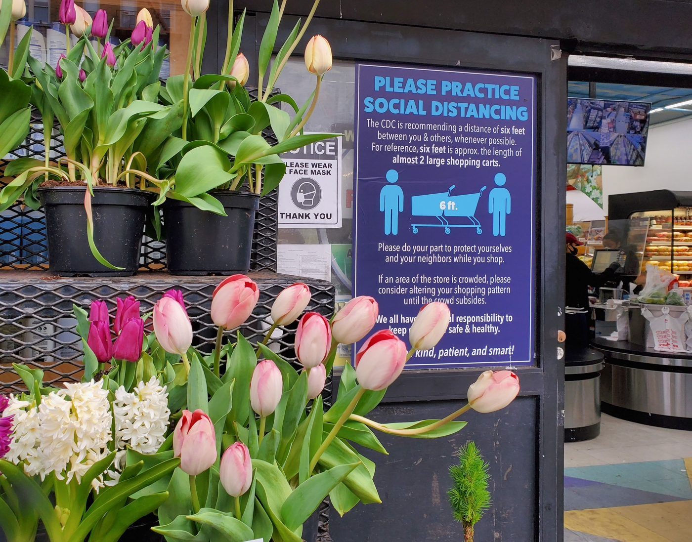 Signs outside Fine Fare, April 2020